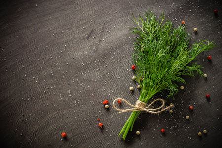 A bunch of fresh dill on dark wood background. Empty space for text.