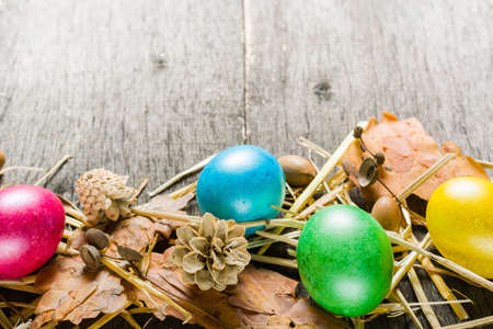 Easter background with colorful chicken eggs on old gray boards. Place for the text.