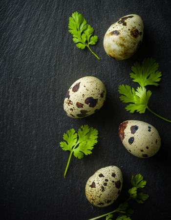 Quail eggs on the table. Spotted shell. Vitamin breakfast. View from above.