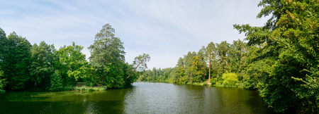 Lake in the forest. Clear calm water and large trees.