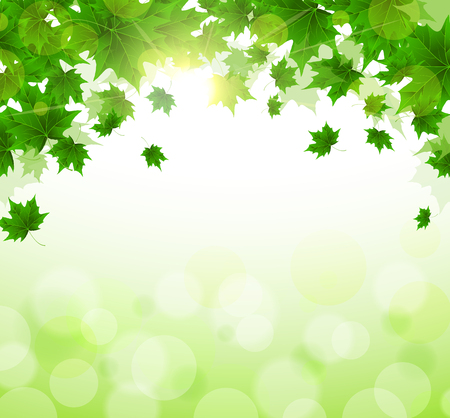 Frame of fresh green leaves of maple. Sunny spring or summer day. Awakening of nature. Cover or background for an article. Copy space.