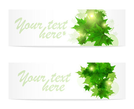 Banner of fresh green leaves of maple. Sunny spring or summer day. Awakening of nature. Cover or background for an article. Copy space.  イラスト・ベクター素材