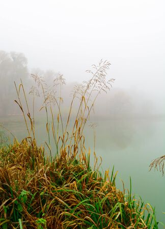 Morning fog on the lake in the fall. Mystical and mysterious weather. Gray autumn natural background