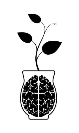 The human brain is made of hemispheres in a clay pot. A sprout from the brain. Knowledge or wisdom