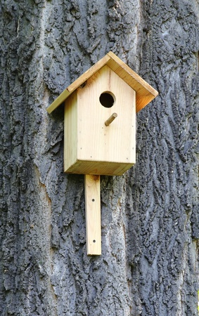man made: Wooden man made birdhouse nailed to the tree