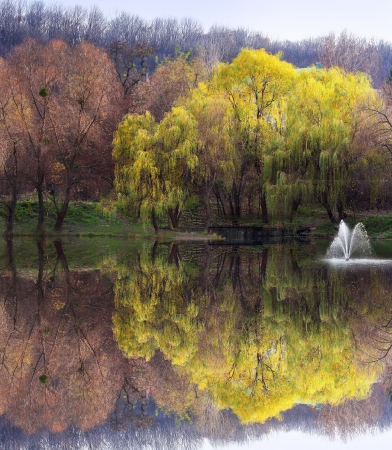 Beautiful symmetry formed by the trees reflected in the pond in Autumn  photo