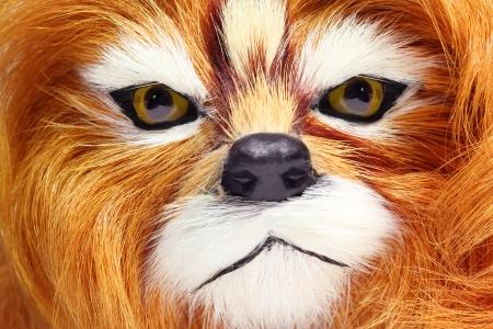 Closeup of a furry toy lion muzzle