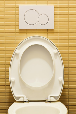 flushing: Modern toilet room with plastic flushing button Stock Photo