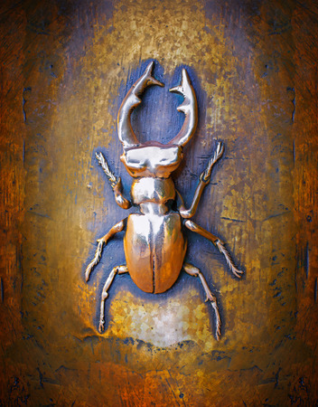 cervus: The golden stag beetle - Lucanus cervus Stock Photo