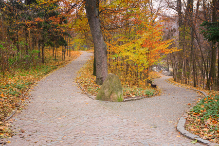 rocky road: Furcation of the road in autumnal Sofiyivsky Park in Uman, Ukraine