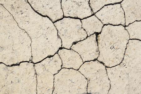 disruption: Closeup of a cracked pavement brick Stock Photo