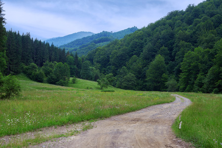 mountainscape: Picturesque Carpathian landscape with a road leading to the forest and mountains, Ukraine