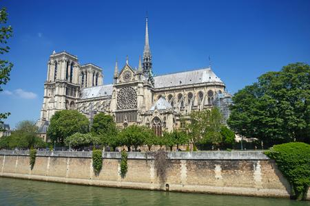 Beautiful summer view on Notre Dame De Paris in Paris, France