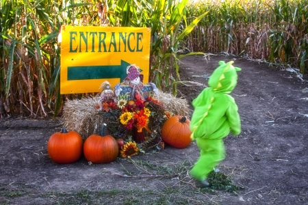 Toddler in Halloween Costume at Entrance to Corn Maze