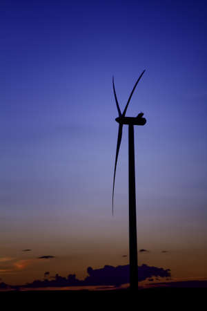 Wind Turbine Renewable Energy at Dusk Portrait Stock Photo - 13360012