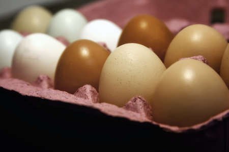 Farm Fresh Eggs in a Pink Carton Stock Photo - 13360019