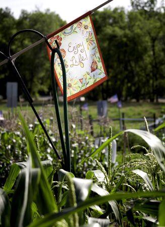 enjoy life: Godetevi segno di vita in un giardino pensile community