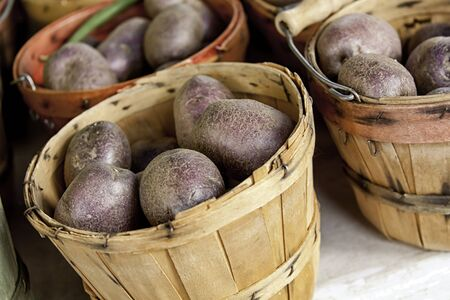 bushel: Bushel baskets of fresh purple potatoes for sale at framer s market Stock Photo