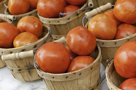 bushel: Bushel baskets of fresh red tomatoes on white table for sale at farmer s market