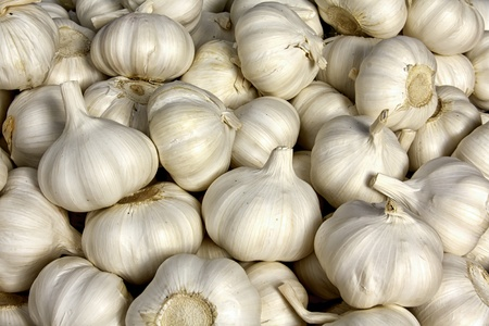 Fresh garlic for sales at farmer s market