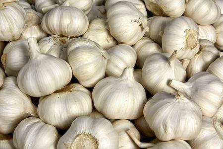 Fresh garlic for sales at farmer s market