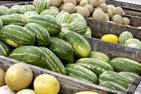 truckload: Truckload of melons for sale at farmer s market