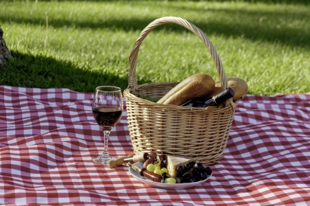 Wine, cheese, grapes picnic in the park, on red and white tablecloth photo