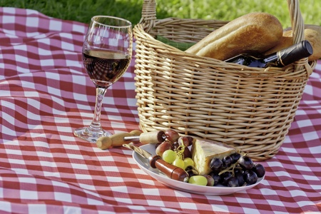 Wine, cheese, grapes picnic in the park photo