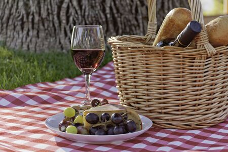 Picnic under a tree on red and white tablecloth under a tree photo