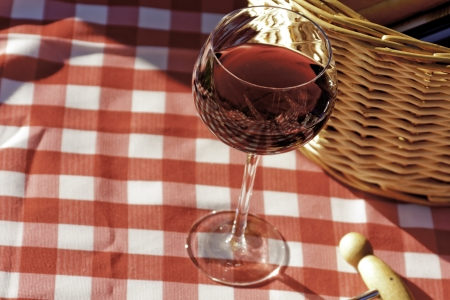 Wine class in the sun on red and white picnic table cloth photo