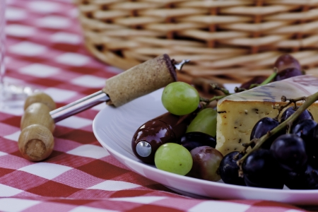 Close up of grapes and cheese on white plate at picnic photo