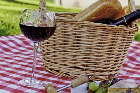 Picnic in the park with wine, cheese and grapes photo