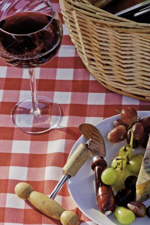 Wine, cheese, grapes and bread picnic on red and white table cloth, portrait photo