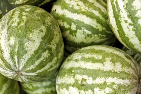 Bin of striped watermelon for sale at local market photo