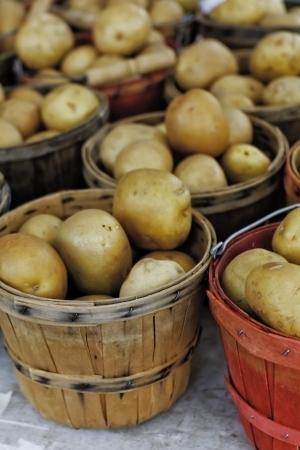 bushel: Bushel baskets of potatoes for sale at farmer s market
