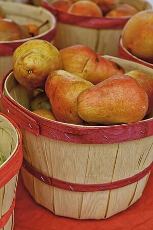 Red pears in small bushel baskets for sale at local farmer s market photo
