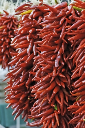 Strands of red pepper chili ristras hanging for sale photo