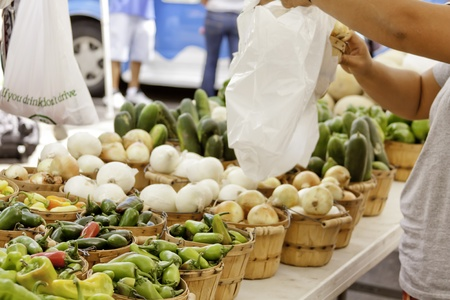 Female hands packaging vegetables after purchase at local farmers market photo