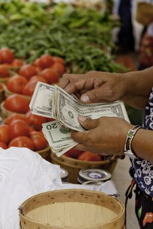 Female hands counting change for sale of vegetables at local farmers market Stock Photo - 15340439
