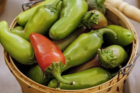 One red pepper in bushel basket of green peppers for sale at local market photo