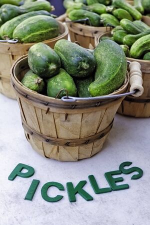 Bushel basket of fresh pickles on white table with words, for sale at farmer s market photo