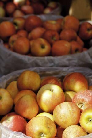 bushel: Sun shining on large bushel baskets of apples at local market Stock Photo