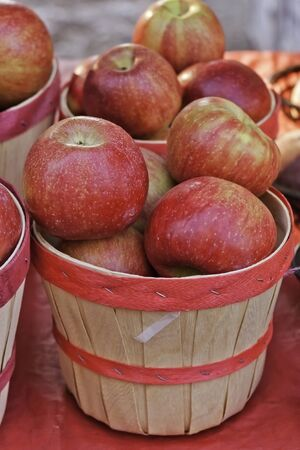 Sunlit apples for sale at local farmers market photo