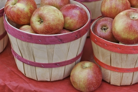 sun s: Apples in bushel baskets for sale at farmers market Stock Photo