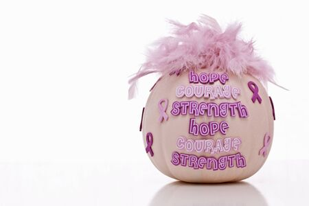 Breast Cancer Awareness, hope, strength, courage on pink pumpkin with pink feathers Stock Photo - 15778218