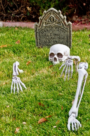 Halloween skeleton bones and tombstone decorations in yard Stock Photo