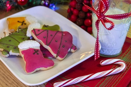 Christmas cookies and candy cane for Santa on white plate and a glass of milk photo