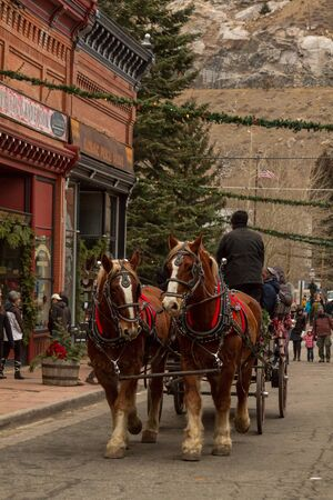 2012 Georgetown Christmas Market and Santa Lucia Childrens Procession Stock Photo - 16745823