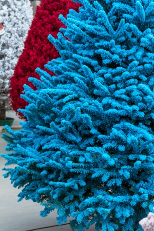 red white and blue flocked christmas trees stock photo 16944696