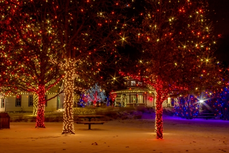 2012 Denver Botanical Gardens Trail of Lights Christmas light display at Chatfield Stock Photo - 17523564